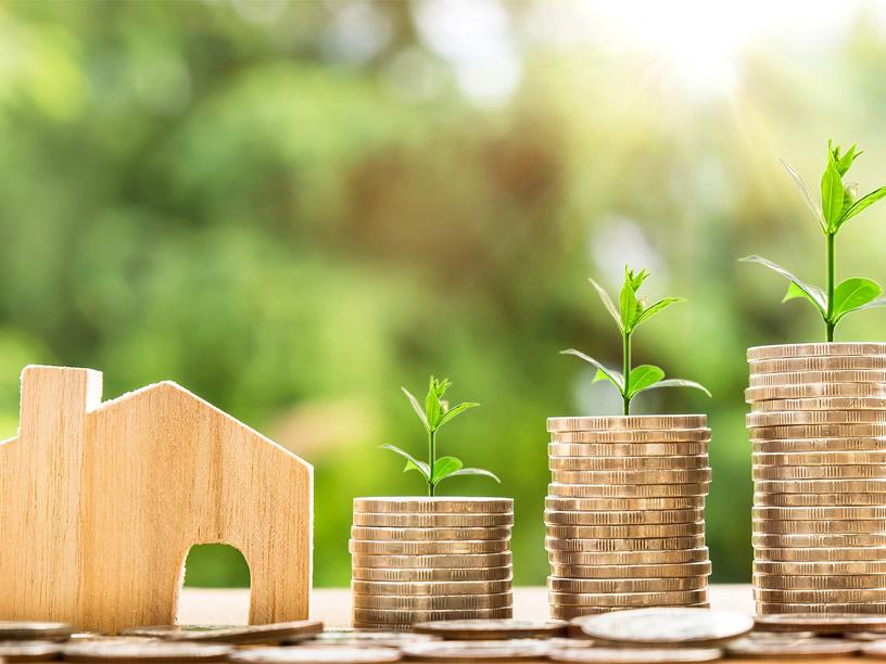 Servicios de asesoría para compra de terreno